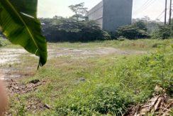 Tanah Kadujaya1 244x163 - Tanah 2000 m2 di Jalan Raya Curug Desa Kadujaya Tangerang