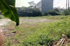 Tanah Kadujaya1 246x162 - Tanah 2000 m2 di Jalan Raya Curug Desa Kadujaya Tangerang