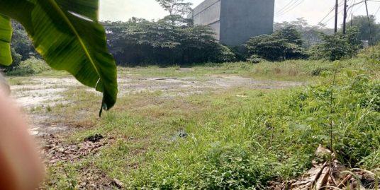 Tanah 2000 m2 di Jalan Raya Curug Desa Kadujaya Tangerang